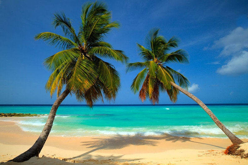Brochure Photography - A Dream Come Ture image of a beautiful beach in Barbados