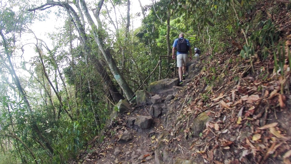 Early on in the climb of Gros Piton the trail is fairly flat with the odd incline
