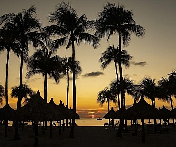 Beach at Marriott Aruba